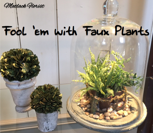 Fool 'em with Faux Plants